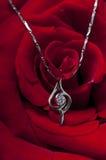 halsbandet steg Royaltyfri Foto