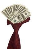 Halsdoek met dollars. Royalty-vrije Stock Foto's