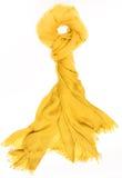 Halsdoek op een witte achtergrond. stock afbeelding