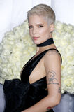 Halsey. At the Los Angeles premiere of `Fifty Shades Darker` held at the Theatre at Ace Hotel in Los Angeles, USA on February 2, 2017 stock photos