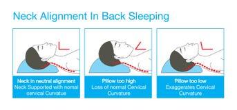 Halsjustering i tillbaka sova Arkivfoton