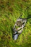Halskette auf dem grünen frischen Gras Stockbilder