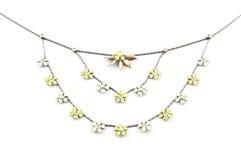 Halskettenisolat der Frau s. Stockbilder
