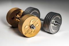 Haltères de devise en métal Photographie stock libre de droits