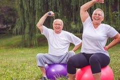 Haltères de levage de couples supérieurs tout en se reposant sur la boule de forme physique dedans Images libres de droits