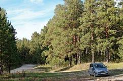 Halt im Wald Lizenzfreies Stockbild