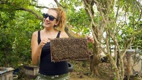 Halten der bloßen Hand des Honigbienenstocks stockbild