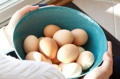 Halten der Schüssel mit frischen Brown-Eiern Stockbilder