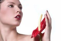 Halten Sie Blume an Lizenzfreie Stockfotografie