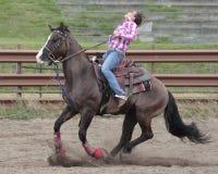 Halten Sie Ihre Pferde Lizenzfreies Stockfoto
