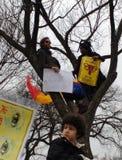 Halten Sie Ihre Rosenbeete weg von meinen Eierstöcken, Protestierender im Bäume, Frauen ` s März, in den Zeichen und im Poster, W Stockbilder