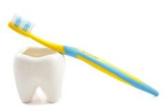 Halten Sie Ihre Zähne weiß und sauber stockbilder