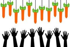Halten Sie Karotte lizenzfreie abbildung