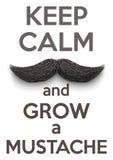 Halten Sie Ruhe und wachsen Sie Schnurrbärte vektor abbildung
