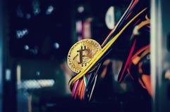 Halten von goldenem Bitcoin Stockfotos