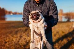 Haltener Pugvorlagenhund im Herbstpark durch Fluss Mann, der mit Haustier spielt lizenzfreies stockfoto