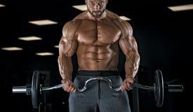 Halterofilista adulto do indivíduo que levanta no gym Foto de Stock