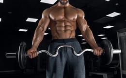 Halterofilista adulto do indivíduo que levanta no gym Imagens de Stock