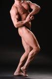 Halterofilista muscular considerável Fotos de Stock Royalty Free