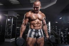 Halterofilista muscular do atleta no bíceps do treinamento do gym imagem de stock royalty free