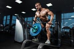Halterofilista muscular do atleta no gym que treina para trás Fotografia de Stock