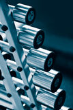 Haltères de chrome dans une ligne Photo stock