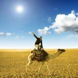 Haltung auf dem Kamel Stockbilder