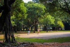 Haltung jungen Mädchens Park Ibirapuera-são Paulo Brasilien am 25. April für Foto stockbilder