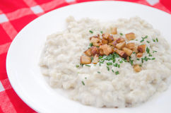 Halusky with bryndza sheep cheese and bacon, which is potato dough dumpling, similar gnocchi(Slovakian cuisine) Stock Image