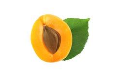 Halv aprikos med den isolerade stenen och bladet Arkivbild