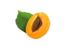 Halv aprikos med stenen och bladet på vit bakgrund Fotografering för Bildbyråer