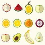 Halv frukt ställde in gullig stil vektor illustrationer