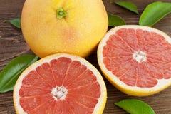 Halv grapefrukt Arkivfoto