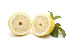 Halv japansk citron som isoleras på vitbakgrund Royaltyfria Bilder