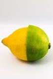 Halv limefrukt för citrus halv citron Fotografering för Bildbyråer