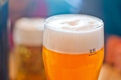 Halv liter av kallt öl Royaltyfri Foto