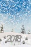 halv liter-bnner för 2018 kort på en snölasndscapebakgrund Royaltyfri Bild