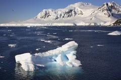 halvö för paradis för antarcticAntarktisfjärd Arkivfoto