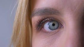 Halv stående för närbild av det högra blåa ögat för kvinna som håller ögonen på direkt in i kamera och blinkar på grå bakgrund lager videofilmer
