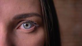 Halv stående för närbild av en kvinna som håller ögonen på shrilly in i kameran arkivfilmer