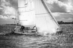 Halv ton under regatta Royaltyfria Bilder