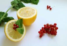 Halva av citronen med den röda vinbäret och mintkaramellen royaltyfria bilder