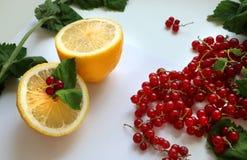 Halva av citronen med den röda vinbäret och mintkaramellen arkivfoto