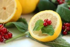 Halva av citronen med den röda vinbäret och mintkaramellen royaltyfri fotografi