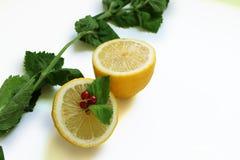 Halva av citronen med den röda vinbäret och mintkaramellen royaltyfria foton