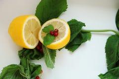 Halva av citronen med den röda vinbäret och mintkaramellen royaltyfri bild