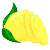 Halva av citronen med sidor Royaltyfria Bilder