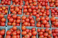 Halva liter av till salu tomater Royaltyfria Foton