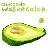 Halve avocado, waterverf het schilderen op witte achtergrond Royalty-vrije Stock Foto's