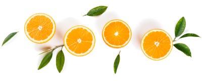 Halve besnoeiingssinaasappelen en groene bladeren stock foto's
